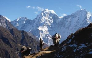 Everest Trekking Region gokyo