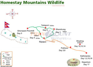 homestay mountains wildlife